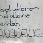 Trachenberge Anatomie Revolution