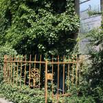 FelixLiebig Fotospaziergang Löbtau-Cotta Vorgarten