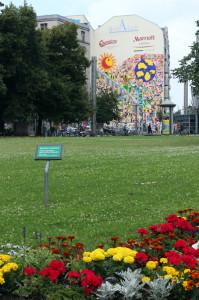 Felix-Liebig Leipzig Karl-Liebknecht-Straße Rasen