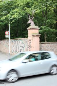 FelixLiebig Darmstadt Tor
