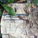 FelixLiebig Darmstadt Zeitung