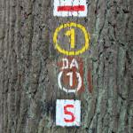 FelixLiebig Darmstadt Zeichen
