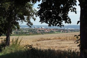 FelixLiebig Fotoanatomie Dresden-Sued Fernblick
