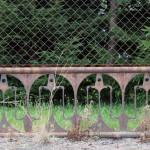 FelixLiebig Fotoanatomie Dresden-Sued Muster