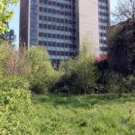 Felix-Liebig_AG-Stadtdokumentation_Schokopack_IMG_1044