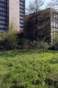 Felix-Liebig_AG-Stadtdokumentation_Schokopack_IMG_1045